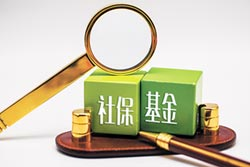 社保投資標的受矚 Q2新進111檔