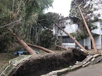 氣候變遷使颱風威猛化 日專家建議重新制定防災標準