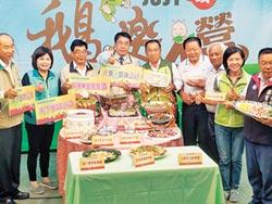 台南下營新四寶 鵝肉宴搶鮮賣
