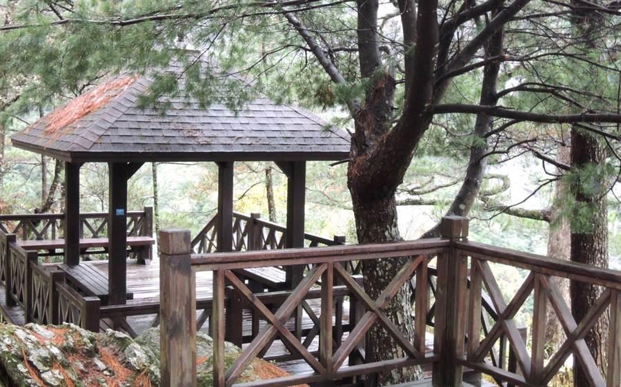 ▲奧萬大國家森林遊樂區吊橋旁的涼亭景緻。(林管處提供/楊樹煌南投傳真)