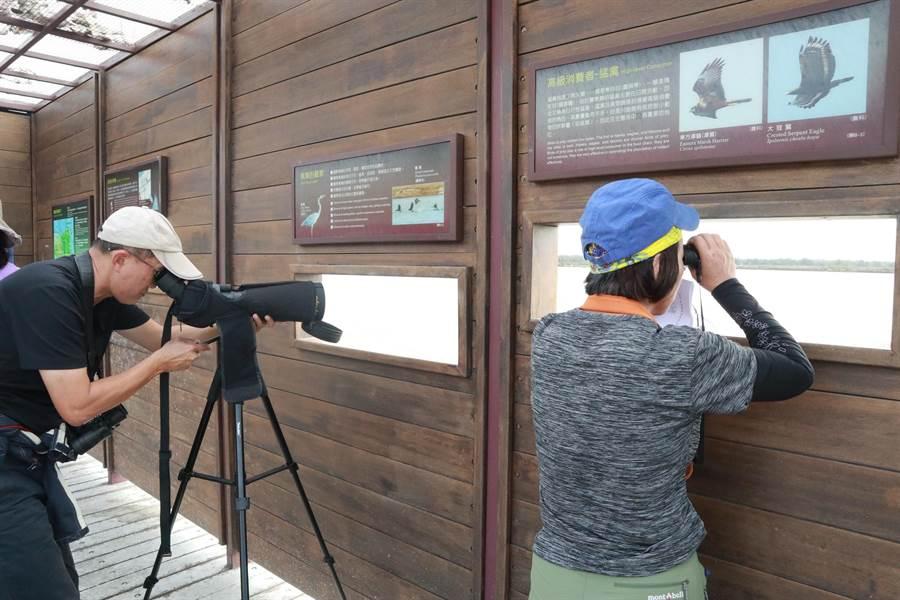 候鳥季來了,由雲嘉南國家風景區管理處舉辦的台灣國際觀鳥馬拉松大賽,今年邁入第7屆,並恢復24小時賽制,將於11月23、24日舉行,即日起到10月底受理報名。(雲管處提供)