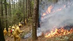 乾燥季節防森林火災 舉報獎金最高100萬