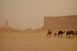 沙烏地阿拉伯對台開放觀光電子簽 外交部表達歡迎