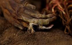 悲慘木乃伊!母死陪葬 男嬰遭活埋500年出土如洋娃娃