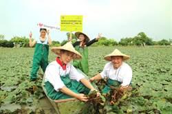 每月行銷在地農產 國際飯店10月推官田菱角料理