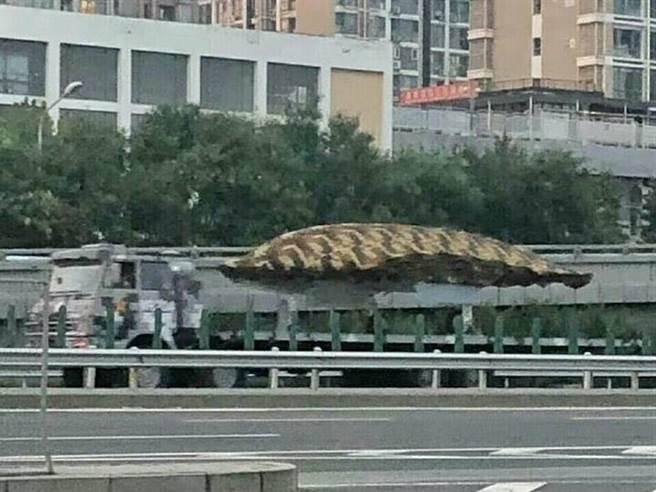 將首次在閱兵式中正式亮相的利劍無人攻擊機在北京進行閱兵排練。(圖/美聯社)