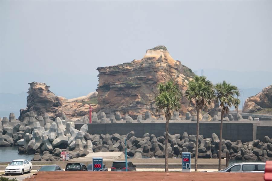 野柳駱駝峰奇岩怪石。(圖取自新北市漁業處官網)