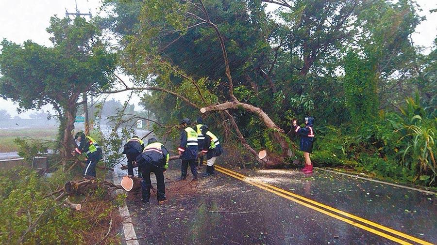宜蘭市慈航路有路樹因風勢倒塌阻礙交通,警方獲報後冒著風雨協助排除。(宜蘭縣警察局提供/李忠一宜蘭傳真)