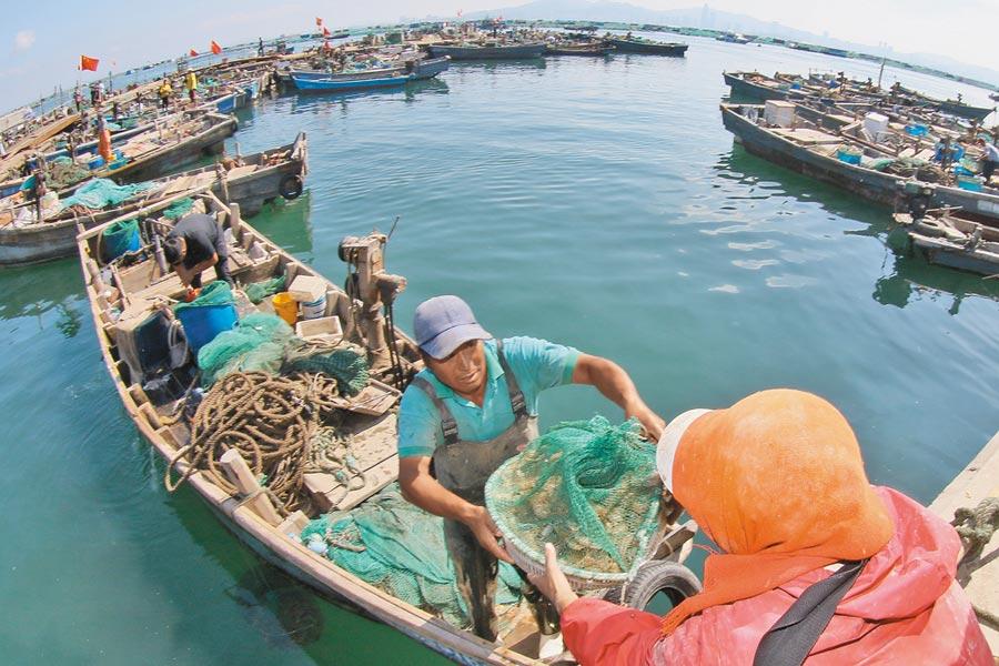 黃渤海漁船出海進行捕撈作業。(新華社資料照片)