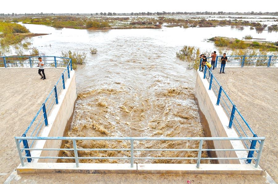 8月25日,新疆南部塔里木河中下游,河道上的生態閘口正在向周邊的胡楊林送水。(中新社)