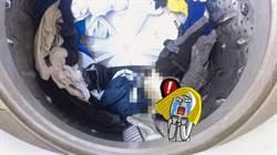 洗衣機驚見翻肚老鼠 網留言大歪樓