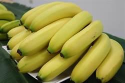 穩定農民收入 農委會香蕉收入保險3日開賣