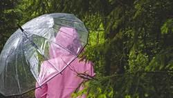 環境殺手!雨傘也是汙染源  這類傘最難回收