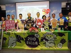 台南好米季10日登場 ㄇㄚˊ幾兔彩繪稻田觀景台正式開放