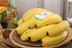 參加香蕉收入保險可保本 每公頃每年至少可領40萬
