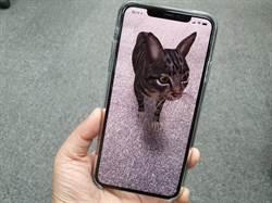 動物到底多大隻?Google搜尋用AR帶你看