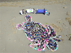 歐盟攜手藍色小精靈、環保署在八里海岸淨灘
