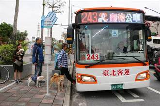 寵物經濟爭夯 新北寵物公車10日上路