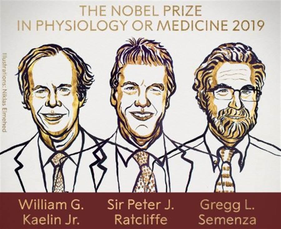 2019諾貝爾生醫獎由由凱林二世(William G. Kaelin Jr)、雷克里夫爵士(Sir Peter J. Ratcliffe)與薩門沙(Gregg L. Semenza)3人共得。(圖/諾貝爾獎官方推特)