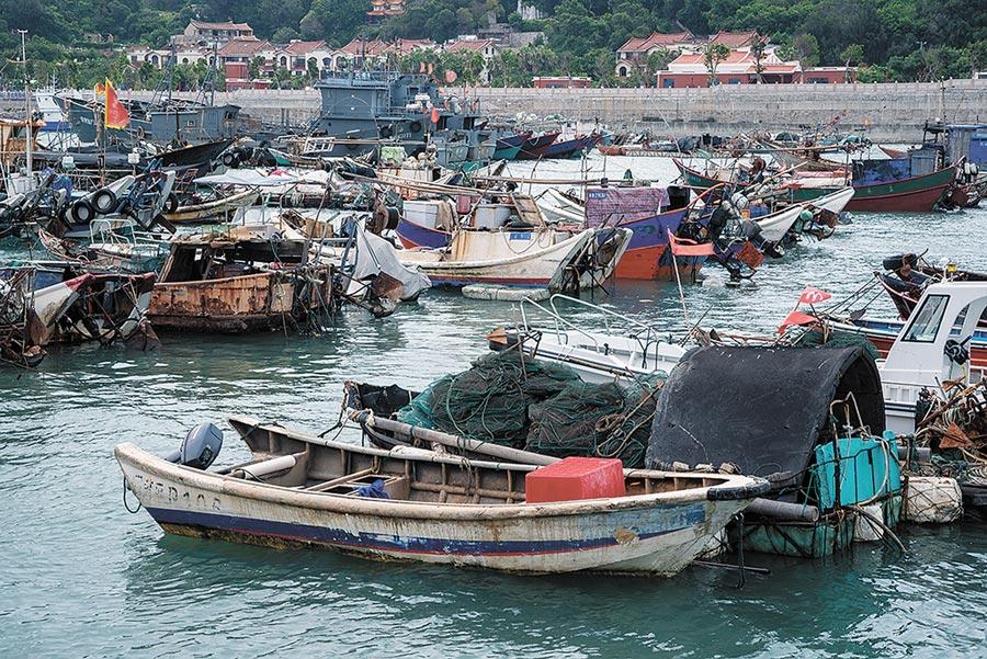 漁港內錯落排列的小漁船帶回豐盛的海鮮。(周麗川攝)