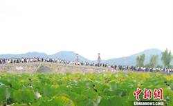 陸黃金周西湖接待遊客362萬人次