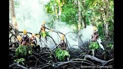 吳建衡勇闖巴布亞紐幾內亞 記錄真實生存之道