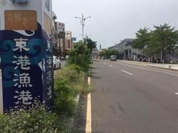 東琉線碼頭前分隔島雜草叢生 業者憂東港觀光門面崩壞