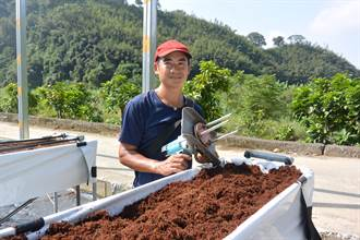 種草莓鬆土到手軟 莓農發明高架專用鬆土機