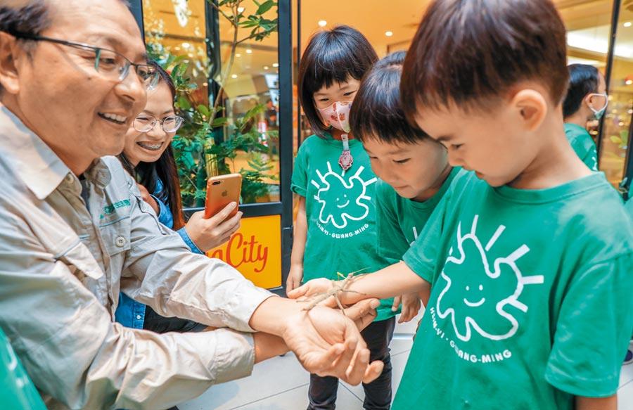遠東巨城購物中心的亞泥生態園區巡迴展,生態解說員將竹節蟲放在小朋友手上大玩接力賽,讓小朋友驚喜連連。(羅浚濱攝)