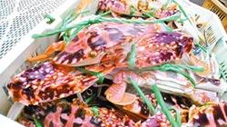 國慶試手氣 吃萬里蟹抽千元紅包