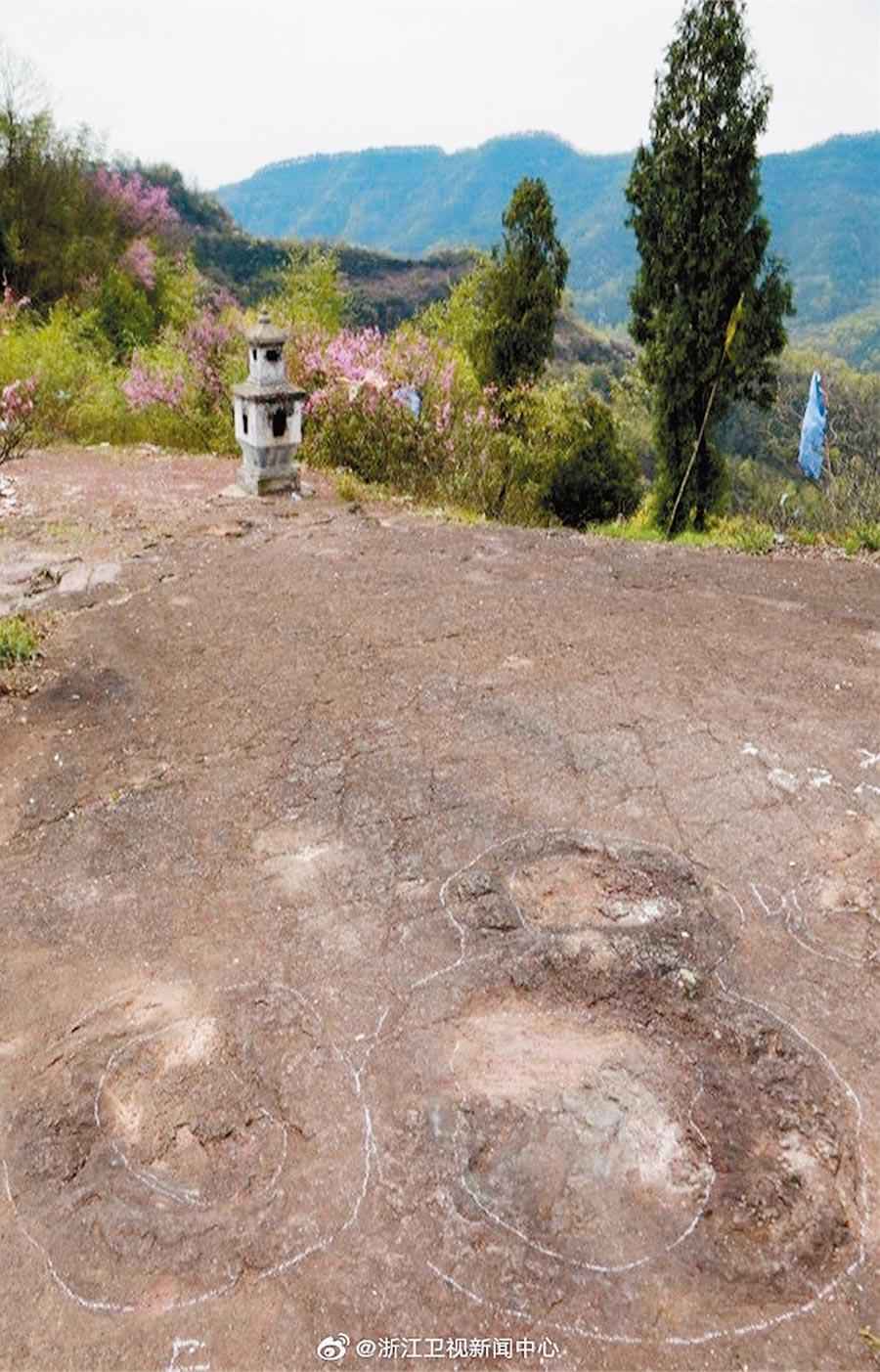 八仙崗恐龍足跡,可以看到明顯區別的兩部分。(取自新浪微博@浙江衛視新聞中心)