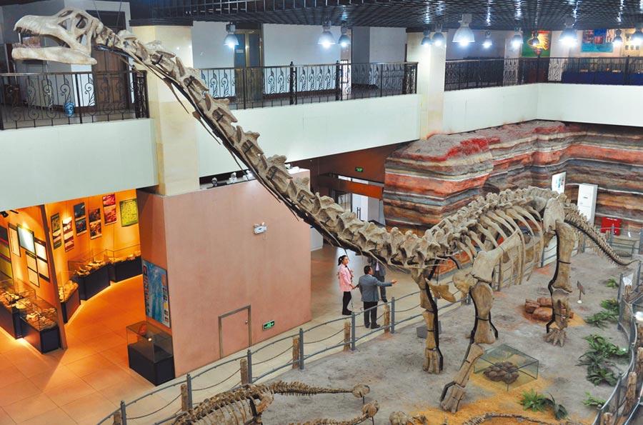 遊客在河北某博物館觀賞蜥腳類恐龍骨架。(中新社資料照片)