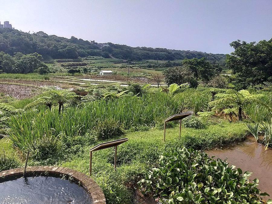 三芝共榮社區友善田園。(圖取自新北市農業局官網)