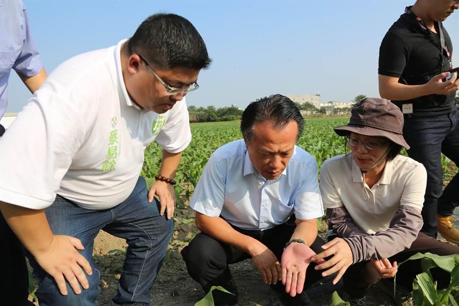 台南區農業改良場助理研究員黃秀雯博士(戴帽者)為眾人說明遭蟲咬食後作物的現況。(張毓翎攝)