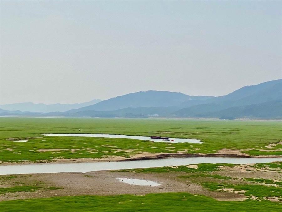 鄱陽湖因乾旱氣候,水位大幅降低,湖區縮小,周圍出現原本是湖底的大片草地。(取自新浪微博@SuzieLeng)