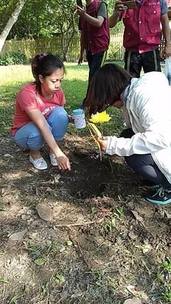 另類追思又環保!新北寵物樹葬活動