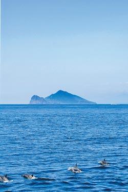 登龜山島及周邊賞鯨行程 搶手