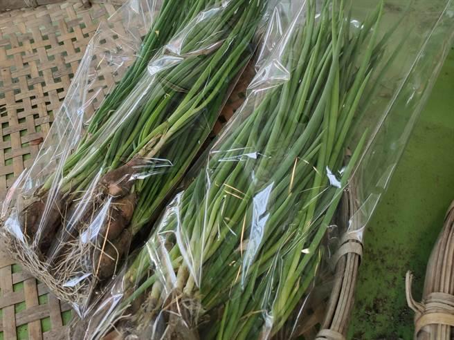 青蔥在菜市場的價格仍然居高不下。(林良齊攝)