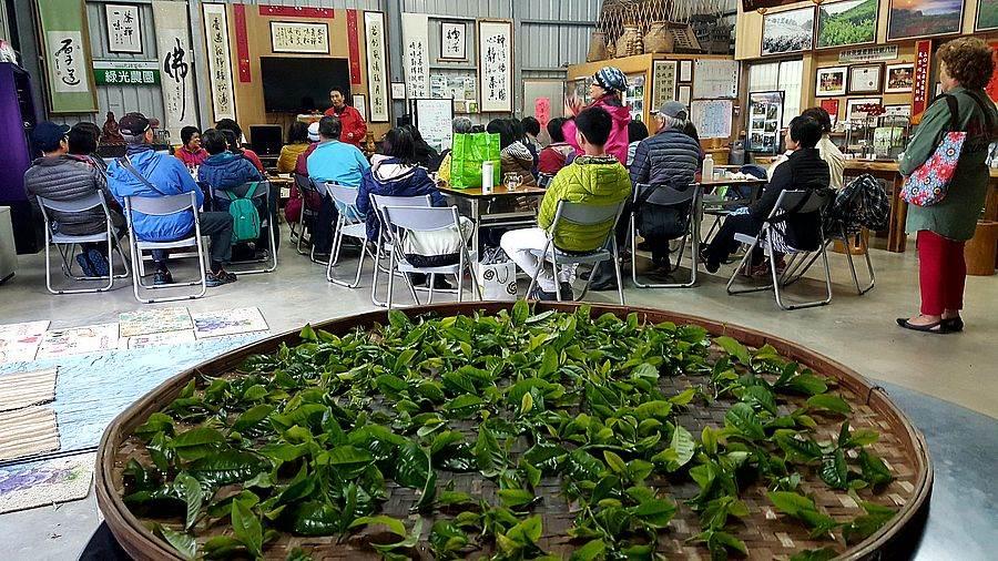 班長解說揉茶的注意事項。(圖取自新北市農業局官網)