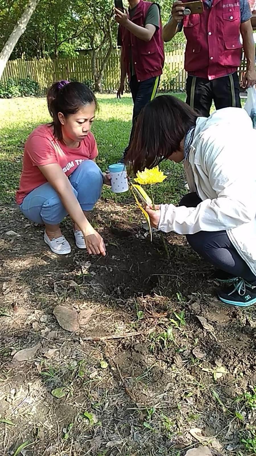 新北市動保處在中和動物之家生命紀念園區舉辦今年第3季寵物樹葬活動。(動保處提供/葉書宏新北傳真)