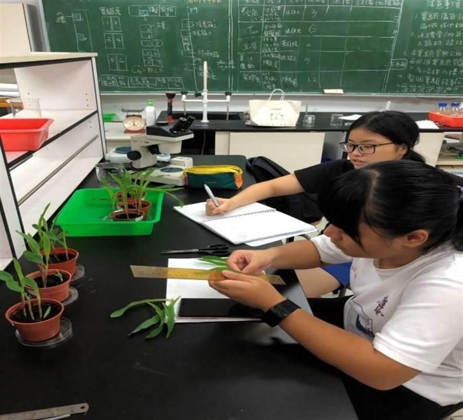 高雄女中呂怡萱及陳孫芊瑜,參與教育部生物科學人才培訓計畫。(教育部提供/林志成台北傳真)