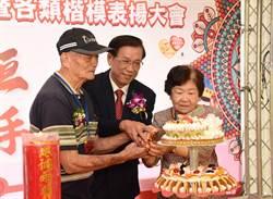 南投縣結婚50年以上有1366對 縣長分批表揚金鑽石婚佳偶