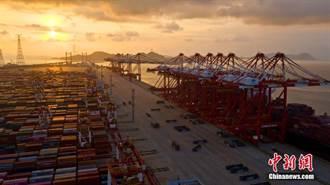 上海洋山港碼頭自動化 效率創新高