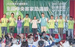 民進黨全國中央客家助選團成立大會