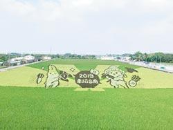 台南彩繪稻田 延長開放