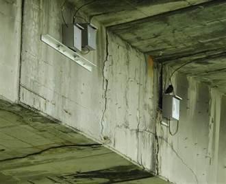 有缺失橋梁未維修卻「尚屬良好」北市府辯:可能樹葉堵塞