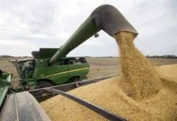 想得美!陸翻倍購買美農產品 傳藏有強硬前提