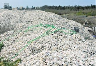 打造澎湖循環島 廢棄蚵殼成貝殼磚
