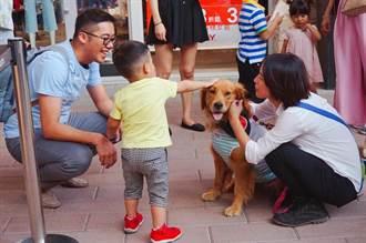 華泰號稱寵物友善 新公約惹眾怒急轉彎修改