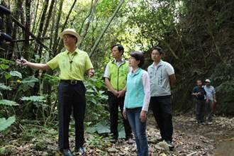 彰化的奧入瀨溪!沿著溪水傍山走八卦山1號登山步道要掛牌了